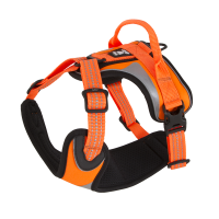 932463-932467_hurtta_lg_dazzle_harness_orange_autumn2015_6