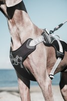 hurtta_trail_harness
